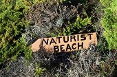 stock photo of nudism  - Naturist beach sign lost in the middle of the vegetation - JPG