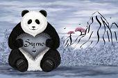 Panda Sumo