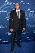 LOS ANGELES - OCT 30:  Dean Norris at the Oceana's Partners Awards Gala 2013 at Beverly Wilshire Hot