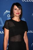 LOS ANGELES - OCT 30:  Constance Zimmer at the Oceana's Partners Awards Gala 2013 at Beverly Wilshir