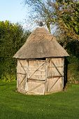 Thatched Shed
