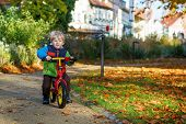 Cute Toddler Boy Of Two Years Riding Bike In Autumn City Park