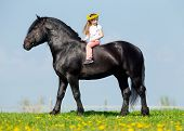 Child riding a black horse in pasture.