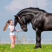 Child and big black horse in pasture.