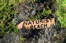 foto of naturist  - Naturist beach sign lost in the middle of the vegetation - JPG