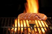 Sausage Grilled On Bbq And Flames In Background, Xxxl