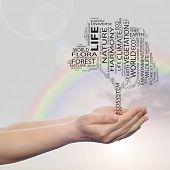 Concept or conceptual black ecology text word cloud tree in man or woman hand on rainbow sky backgro