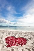 Heart Of Roses Petals On Sea Sand Beach