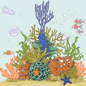 Coral reef illustration with sea anemones