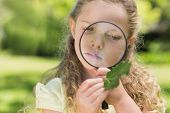 Young girl examining a leaf with magnifying glass at the park