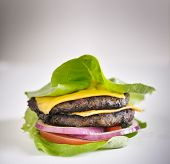 Protein burger lettuce wrap with toppings and copyspace