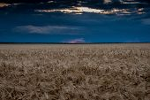 evening field and dark sky landscape