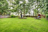 picture of playground  - Fenced backyard with green lawn and fir trees - JPG