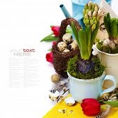 Easter still life of quail eggs and spring flowers (with easy removable text)