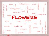 Flowers Word Cloud Concept On A Whiteboard