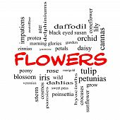 Flowers Word Cloud Concept In Red Caps