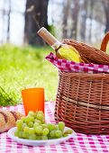 Picnic basket with wine bottle and grape at lawn