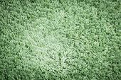 Green Carpet. Background.