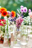 nice flowers in the bottles