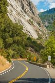 Yosemite Curved Road