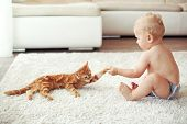 stock photo of baby cat  - Toddler playing with red cat on a white carpet at home - JPG