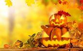 Scary jack o lantern halloween background, close-up.