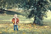 Autumn Photo Cute Child In The Park