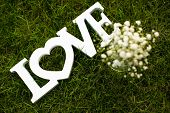 Love is in the air and on the green - Word LOVE lying in lush, well cut grass - Wedding day concept