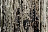 stock photo of tar  - close up detail of Tar on Wood - JPG