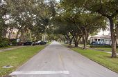 Street In Coral Gables