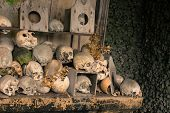 Skulls and bones inside the ossuary of Marville, France, with thousands of ancient skulls of 19th century and older