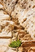 Stone Staircase Leads