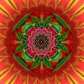 Rosette Fractral Red Green