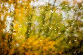 Rain drops on dirty window with out of focus autumn landscape in background