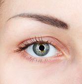 Human eye close-up
