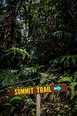 Summit Trail Oudoor Hiking Sign