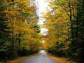 Peaceful Autumn Road in Wisconsin