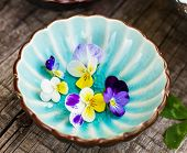 Pansy flowers in a blue cup on wooden background