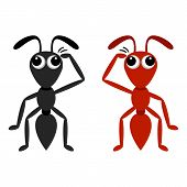 Black And Red Ant
