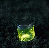 Glowing Jar On The Moss