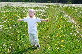Small Child The Boy Plays On A Summer Meadow