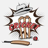 picture of cricket ball  - Cricket bat with red ball and wicket stumps under umpire - JPG