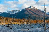 pic of andes  - Autumn in Patagonia - JPG