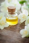 picture of jasmine  - Bottle of essential jasmine oil and white jasmin flowers.