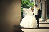 pic of married  - wedding day of  happy just married newlyweds - JPG