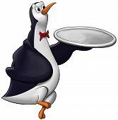 The Penguin Waiter