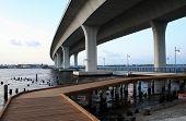 Curved Architecture Bridge