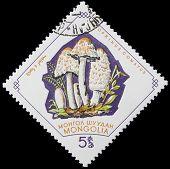 canceled post stamp