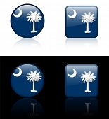 South Carolina Flag Icon on Internet Button Original Vector Illustration AI8 Compatible