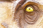 Dinosaur Model Eye In Dinosaur Park. Clise Up poster